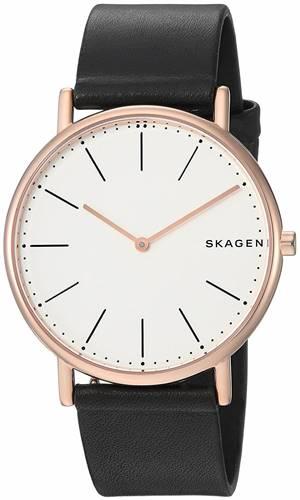 ساعت مچی برند اسکاگن مدل SKW6430