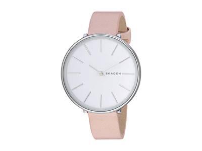 ساعت مچی برند اسکاگن مدل SKW2690