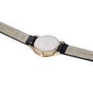 ساعت مچی برند پیرکاردین مدل CPI.2515
